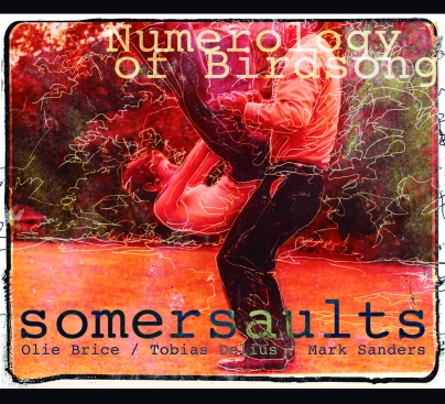 Somersaults Numerology Front Cover 300dpi